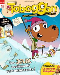 Toboggan N° 483