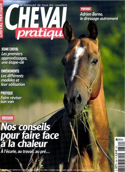 Cheval Pratique - N°352
