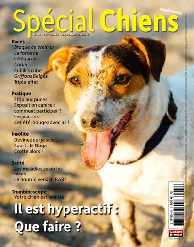 Abonnement magazine Spécial Chiens