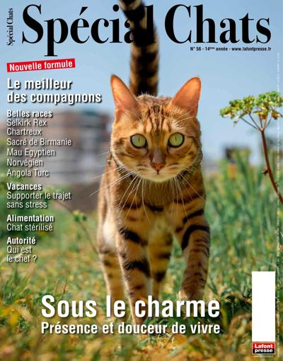 Abonnement magazine Spécial Chats