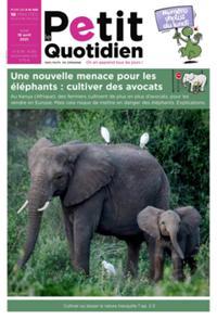 Le Petit Quotidien N° 6512