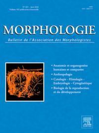 Morphologie N° 201803