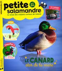 La Petite salamandre N° 28