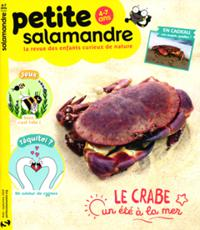 La Petite salamandre N° 31