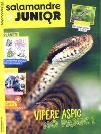 Salamandre Junior N° 124
