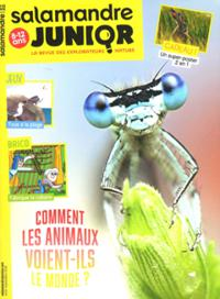 Salamandre Junior N° 125