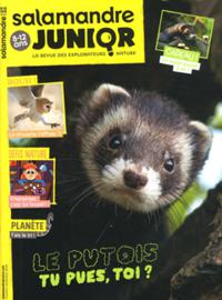 Salamandre Junior N° 126