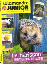 Salamandre Junior N° 129