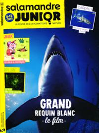 Salamandre Junior N° 131