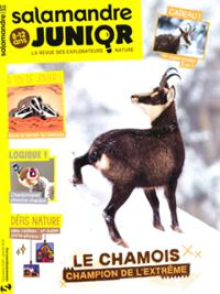 Salamandre Junior N° 133