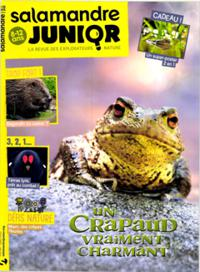 Salamandre Junior N° 134