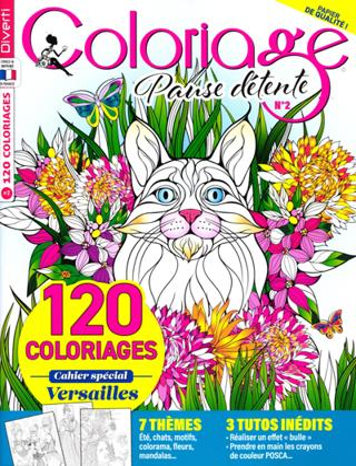 Coloriage ambiance zen