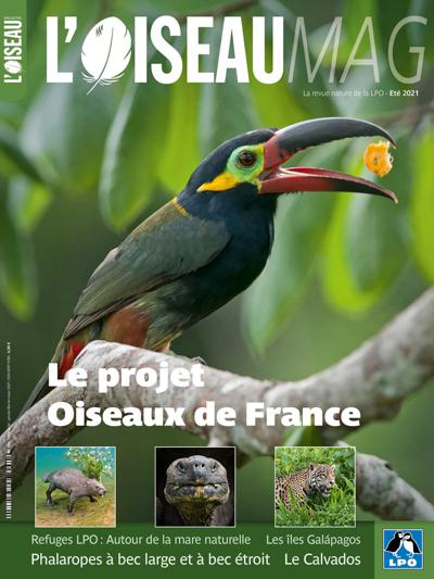 Abonnement Oiseau Mag