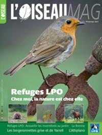 L'Oiseau Mag N° 142