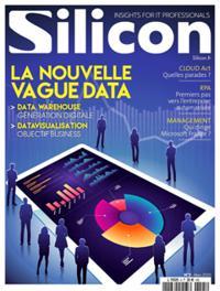 Silicon N° 2